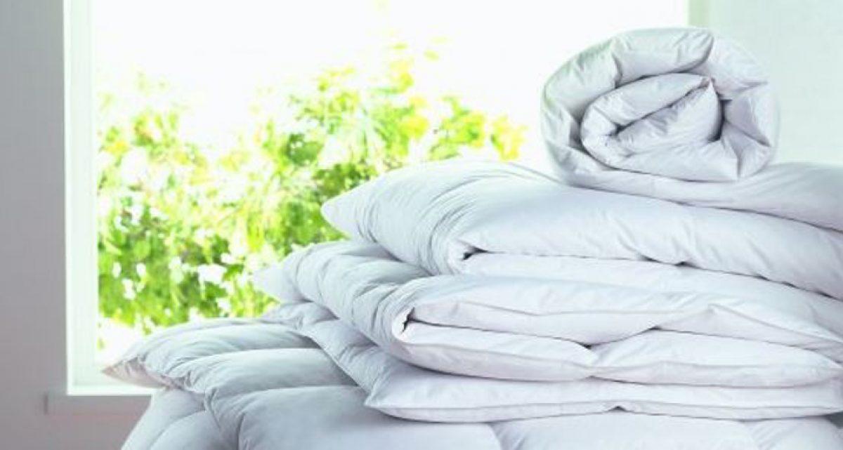 Fine Bedding Company 3