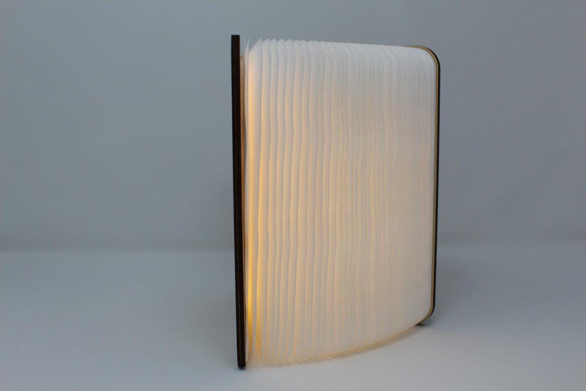 Smart Book Light 2